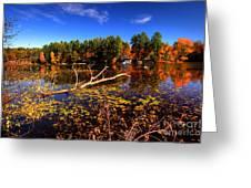 Autumn At Bomoseen Lake  Greeting Card