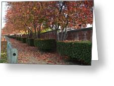 Autumn At Its Best Greeting Card by Naomi Berhane