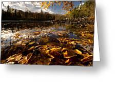 Autumn At Ragged Falls Greeting Card