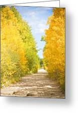 Autumn Back County Road Greeting Card