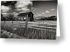 Autumn Barn Black And White Greeting Card