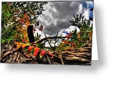 Autumn Breeze Through The Trees    Alt Greeting Card