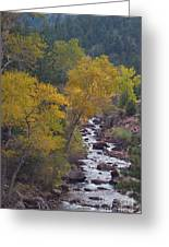 Autumn Canyon Colorado Scenic View Greeting Card