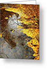 Autumn Collage Greeting Card