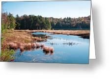 Adirondack Lake 2 Greeting Card