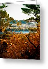 Bald Mountain View Greeting Card