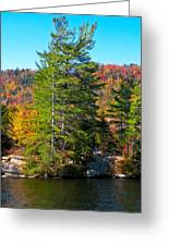 Adirondack Color P8 The White Bench Greeting Card