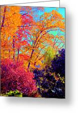 Autumn Colors 13 Greeting Card