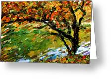 Autumn Colors 2 Greeting Card