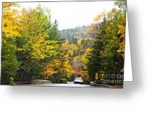 Autumn Colors 3990 Greeting Card