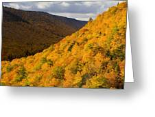 Autumn Colours At North Mountain Greeting Card