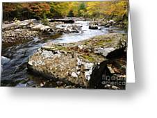 Autumn Cranberry River Greeting Card