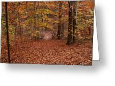 Autumn Creekside Trail Greeting Card