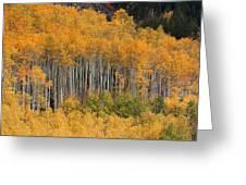 Autumn Curtain Greeting Card