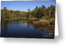 Autumn Day At The Lake In Algonquin Provincial Park Greeting Card