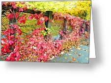 Autumn Decoration Greeting Card