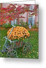 Autumn Display I Greeting Card