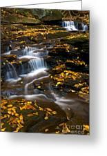 Autumn Falls - 72 Greeting Card