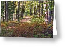 Autumn Ferns Greeting Card
