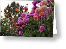 Autumn Flowers Greeting Card by Sarai Rachel