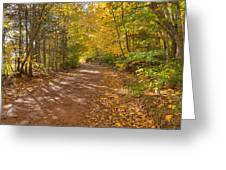 Autumn Foliage On A Country Road Greeting Card