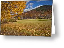 Autumn Foliage Scenery On Mohawk Trail Greeting Card