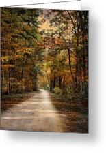 Autumn Forest 3 Greeting Card