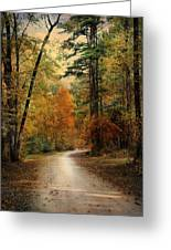 Autumn Forest 4 Greeting Card by Jai Johnson