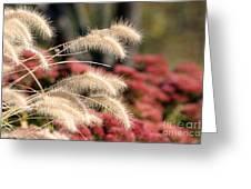 Autumn Garden Greeting Card