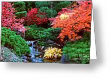 Autumn Garden Waterfall II Greeting Card