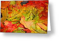 Autumn Gathering Greeting Card