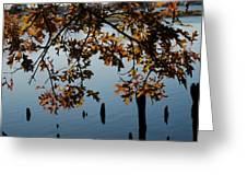 Autumn Gold On The Water Greeting Card