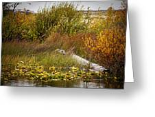 Autumn Hunting Greeting Card