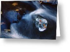 Autumn Ice In A Creek Greeting Card