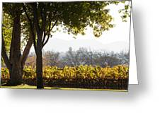 Autumn In A Vineyard Greeting Card