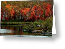 Autumn In Canada 2 Greeting Card