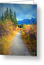 Autumn In Canada Greeting Card
