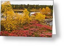 Autumn In Inari Greeting Card