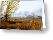Autumn In Lone Pine Greeting Card