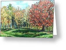 Autumn In My Backyard  Greeting Card