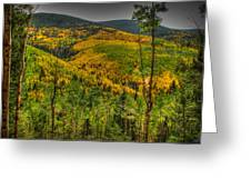 Autumn In The Rockies Hdr Greeting Card