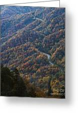Autumn In The Smoky Mountains Greeting Card by Dennis Hedberg