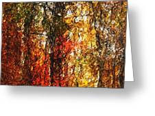 Autumn In The Woods Greeting Card by David Lane