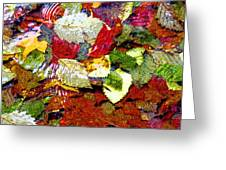 Autumn In Water Greeting Card