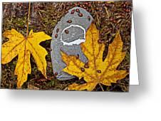 Autumn Ladybugs Greeting Card
