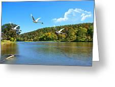 Autumn Landing Greeting Card