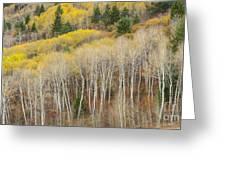 Autumn Layers Greeting Card