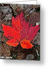 Autumn Leaf Art Iv Greeting Card