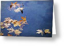 Autumn Leaves Drifting Greeting Card