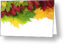 Autumn Leaves In Colour Greeting Card